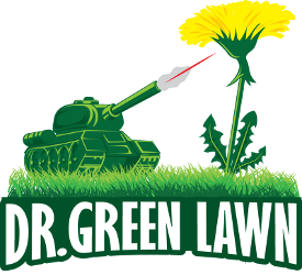 Salamanca Ny Lawn Care Olean Ny Lawn Care Dr Green Lawn